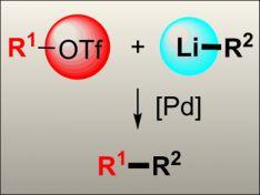 Direct Cross-Coupling of Organolithium Reagents